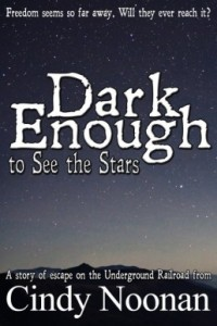 dark-enough-to-see-the-stars-e1402679621534