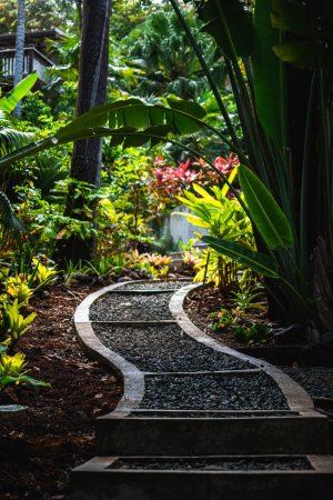 rules vs. relationship, garden path